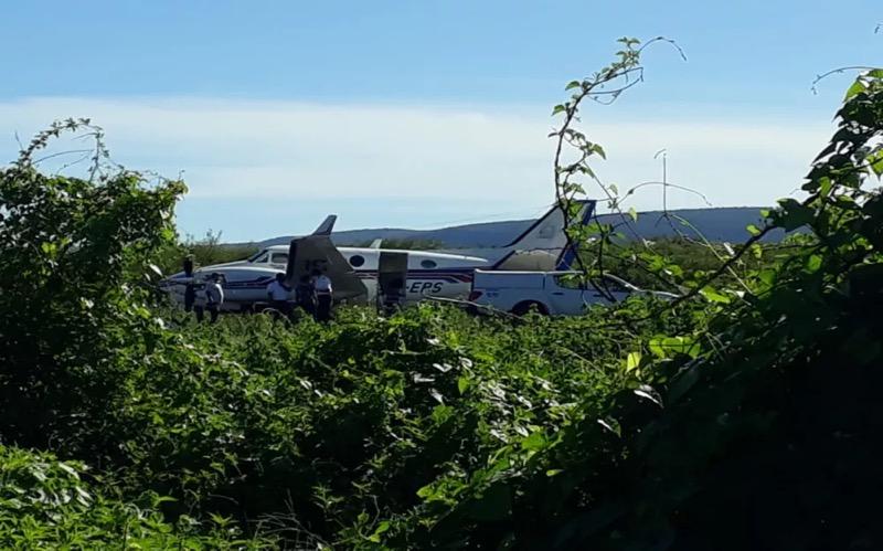 Aeronave bateu em jumento pouco depois de pousar na pista do aeródromo de Ibotirama — Foto: Gazeta 5