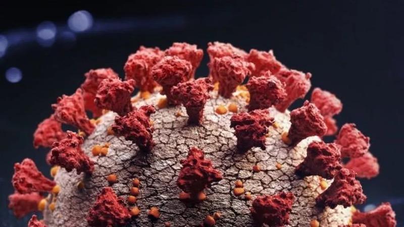 Foto: Casos suspeitos de nova variante do coronavírus são investigados no CE — Foto: Getty Images via BBC
